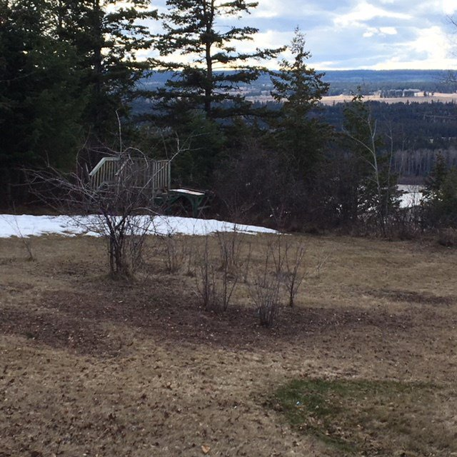 Photo 3: Photos: 8072 S 97 Highway in Quesnel: Quesnel Rural - South House for sale (Quesnel (Zone 28))  : MLS®# R2353450