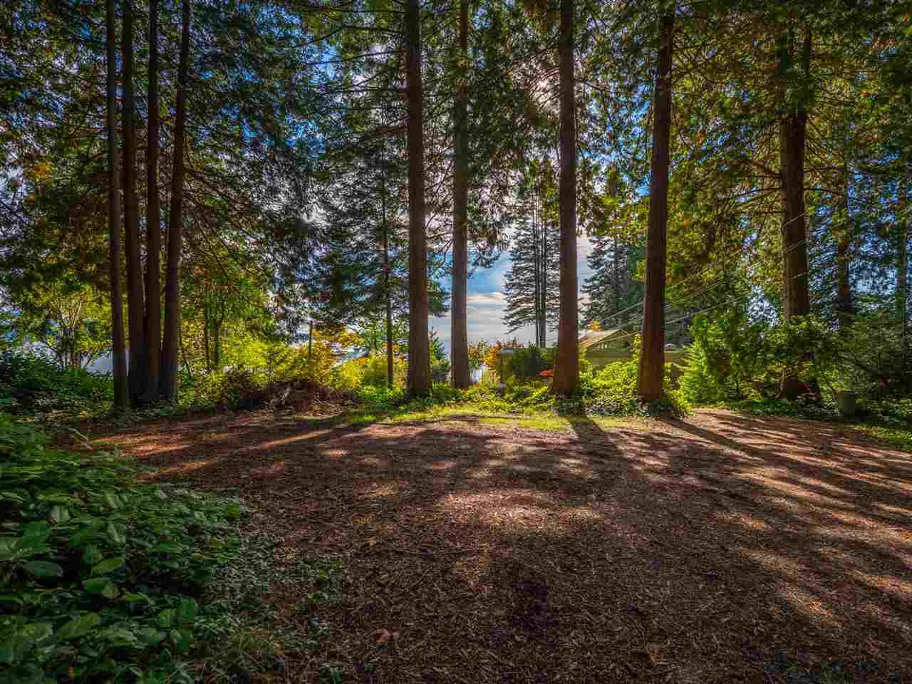 Photo 2: Photos: 877 GOWER POINT Road in Gibsons: Gibsons & Area House for sale (Sunshine Coast)  : MLS®# R2419918