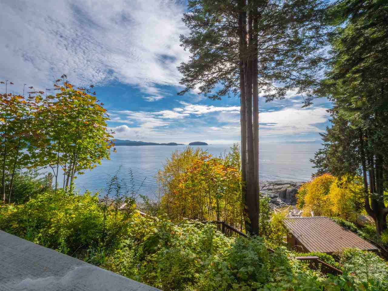 Photo 5: Photos: 877 GOWER POINT Road in Gibsons: Gibsons & Area House for sale (Sunshine Coast)  : MLS®# R2419918