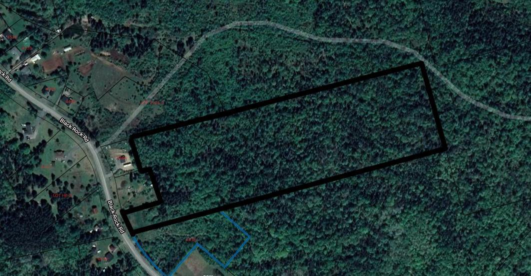 Main Photo: Lot Black Road Road in Black Rock: 404-Kings County Vacant Land for sale (Annapolis Valley)  : MLS®# 202011537