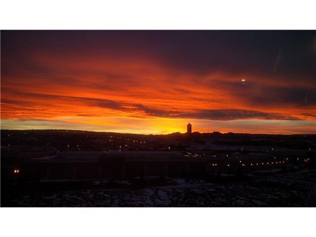 Photo 20: Photos: 186 EVANSBROOKE Landing NW in CALGARY: Evanston Residential Detached Single Family for sale (Calgary)  : MLS®# C3615117
