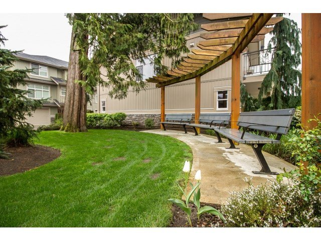 Photo 18: Photos: 28 20966 77A Avenue in Langley: Willoughby Heights Townhouse for sale : MLS®# R2053842