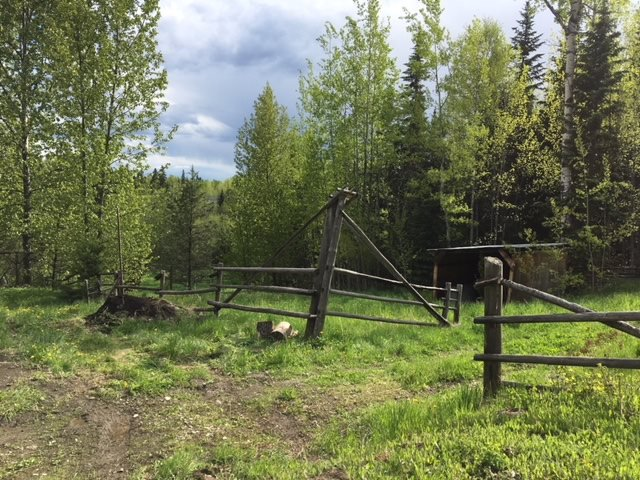 """Photo 15: Photos: 4570 MATTHEWS Road in Quesnel: Quesnel - Rural North House for sale in """"MOOSE HEIGHTS"""" (Quesnel (Zone 28))  : MLS®# R2371301"""