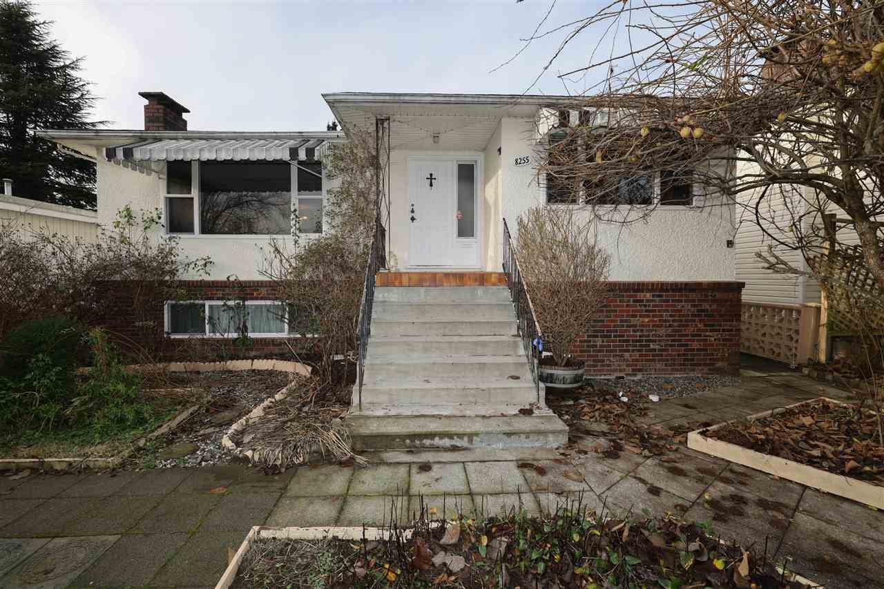 Main Photo: 8255 ELLIOTT Street in Vancouver: Fraserview VE House for sale (Vancouver East)  : MLS®# R2527761