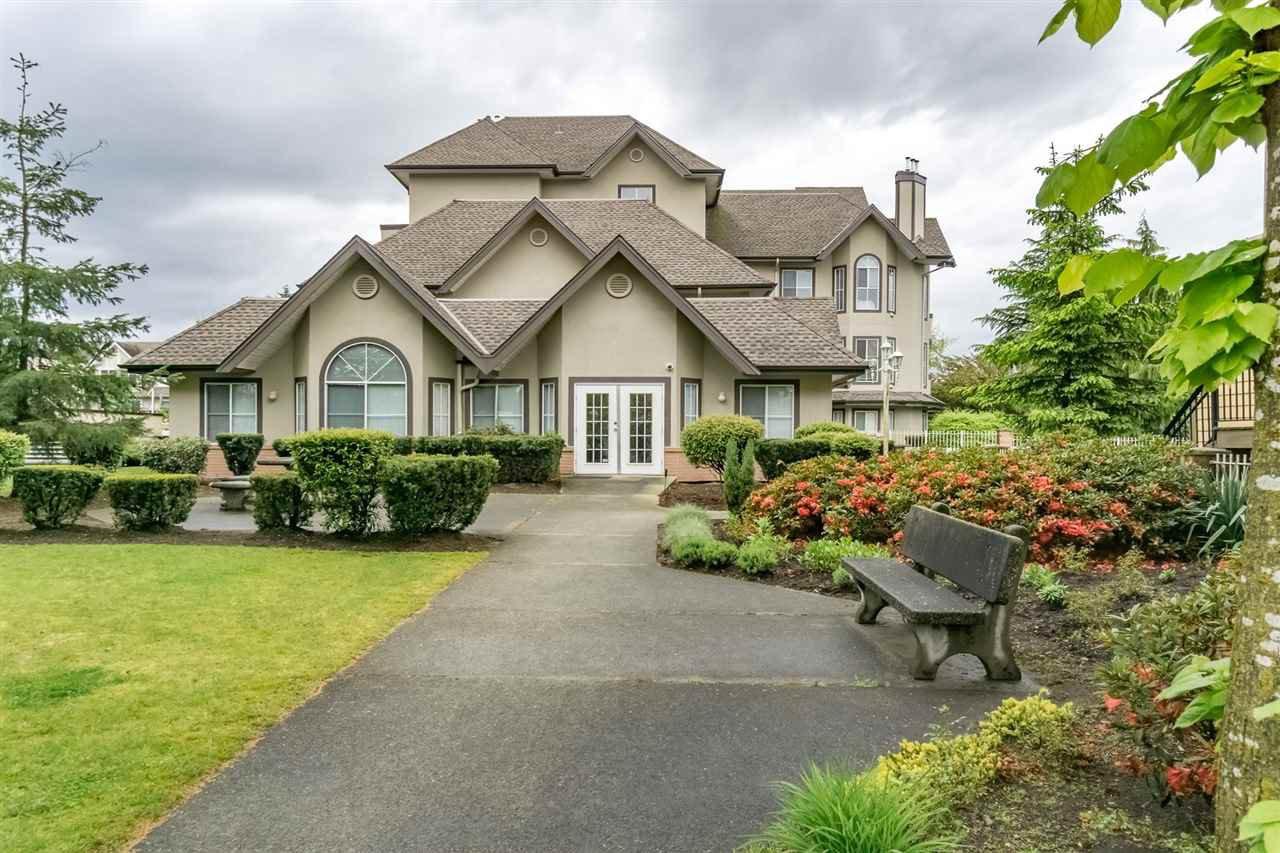 "Main Photo: 314 12464 191B Street in Pitt Meadows: Mid Meadows Condo for sale in ""LASEUR MANOR"" : MLS®# R2166407"