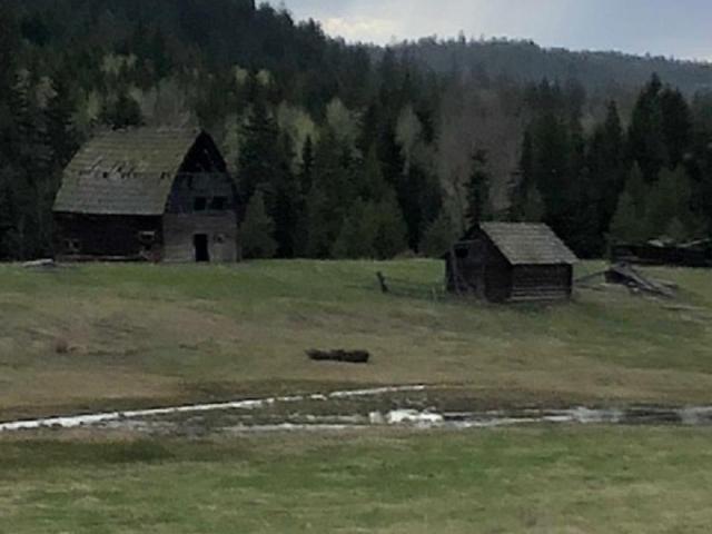 Main Photo:  in : Barnhartvale Lots/Acreage for sale (Kamloops)  : MLS®# 146208