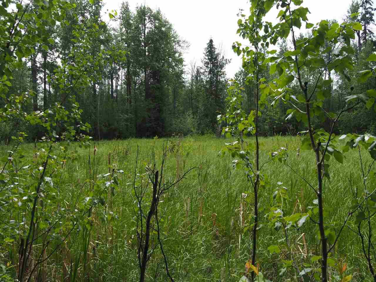 Main Photo: LOT 24 ROSE Drive: 150 Mile House Land for sale (Williams Lake (Zone 27))  : MLS®# R2285204