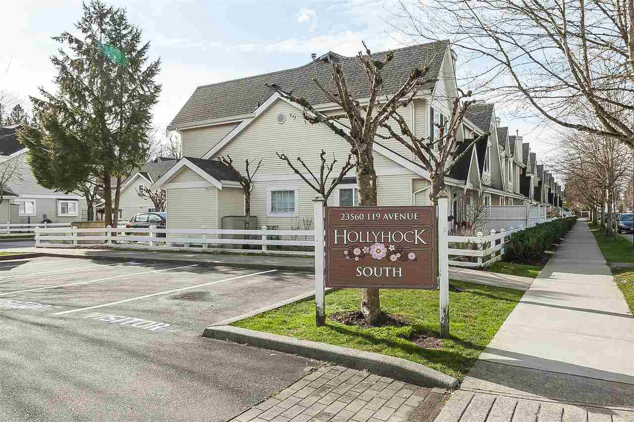Main Photo: 50 23560 119TH AVENUE in Maple Ridge: Cottonwood MR Townhouse for sale : MLS®# R2438943