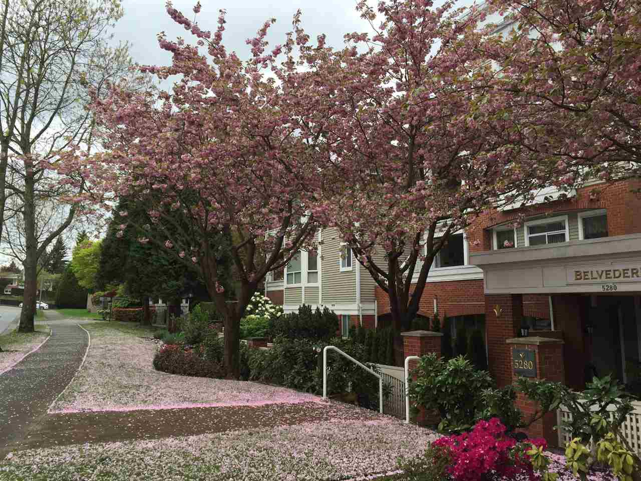 Spring time of 5280 Oakmount Crescent, Bby.