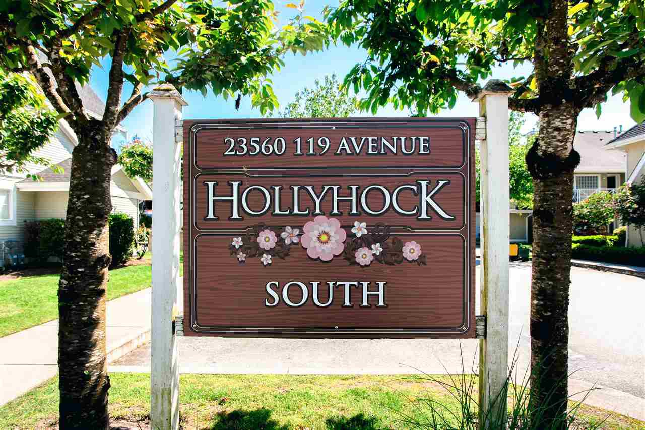 """Photo 14: Photos: 35 23560 119 Avenue in Maple Ridge: Cottonwood MR Townhouse for sale in """"HOLLYHOCK"""" : MLS®# R2170716"""