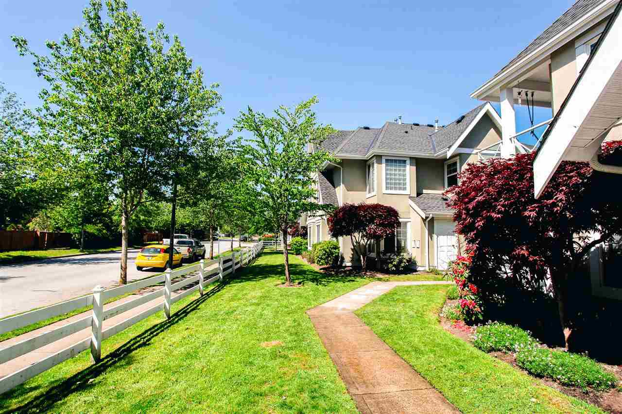 """Photo 17: Photos: 35 23560 119 Avenue in Maple Ridge: Cottonwood MR Townhouse for sale in """"HOLLYHOCK"""" : MLS®# R2170716"""