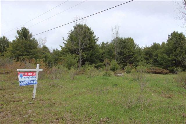 Main Photo: Lt 22 Maritime Road in Kawartha Lakes: Rural Bexley Property for sale : MLS®# X3793246