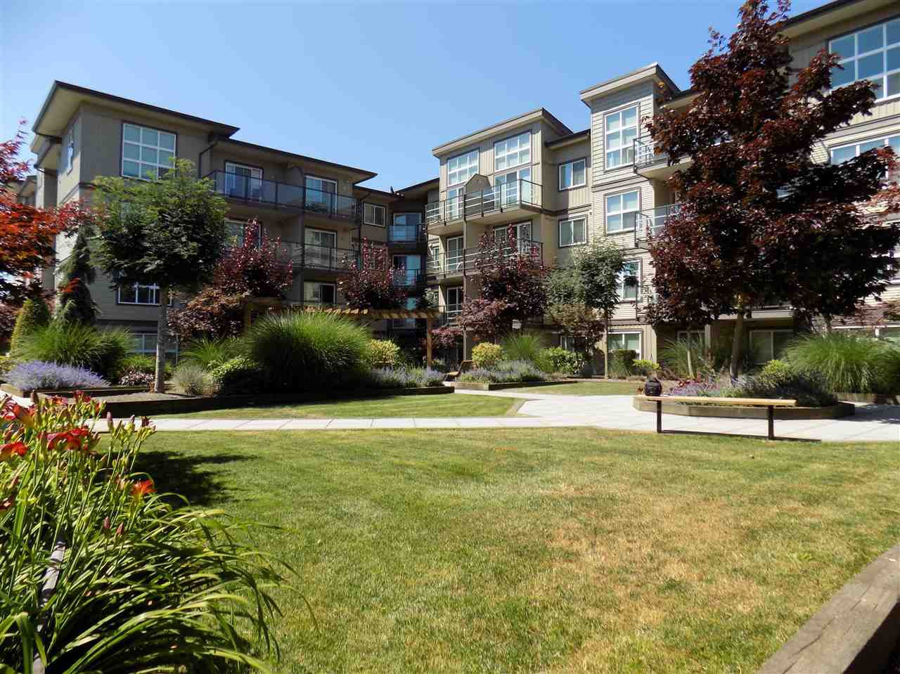 """Photo 13: Photos: 406 30525 CARDINAL Avenue in Abbotsford: Abbotsford West Condo for sale in """"Tamarind Westside"""" : MLS®# R2185961"""
