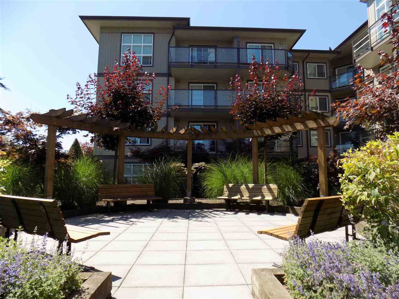"""Photo 14: Photos: 406 30525 CARDINAL Avenue in Abbotsford: Abbotsford West Condo for sale in """"Tamarind Westside"""" : MLS®# R2185961"""
