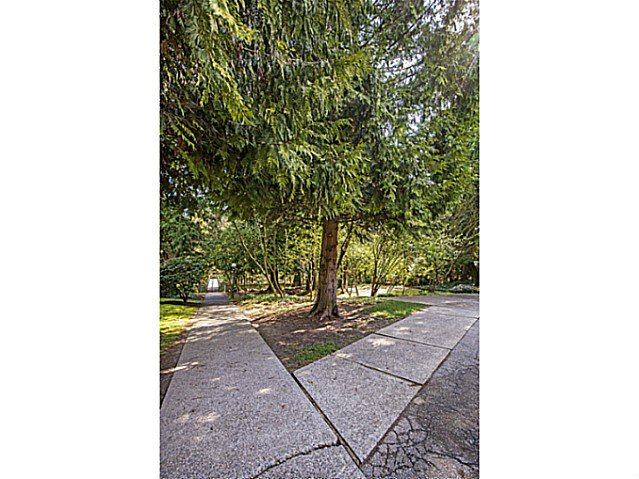 Photo 16: Photos: 3049 ARIES Place in Burnaby: Simon Fraser Hills Townhouse for sale (Burnaby North)  : MLS®# V1055744