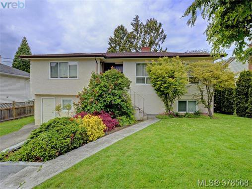 Main Photo: 1594 Mortimer Street in VICTORIA: SE Mt Tolmie Single Family Detached for sale (Saanich East)  : MLS®# 378568