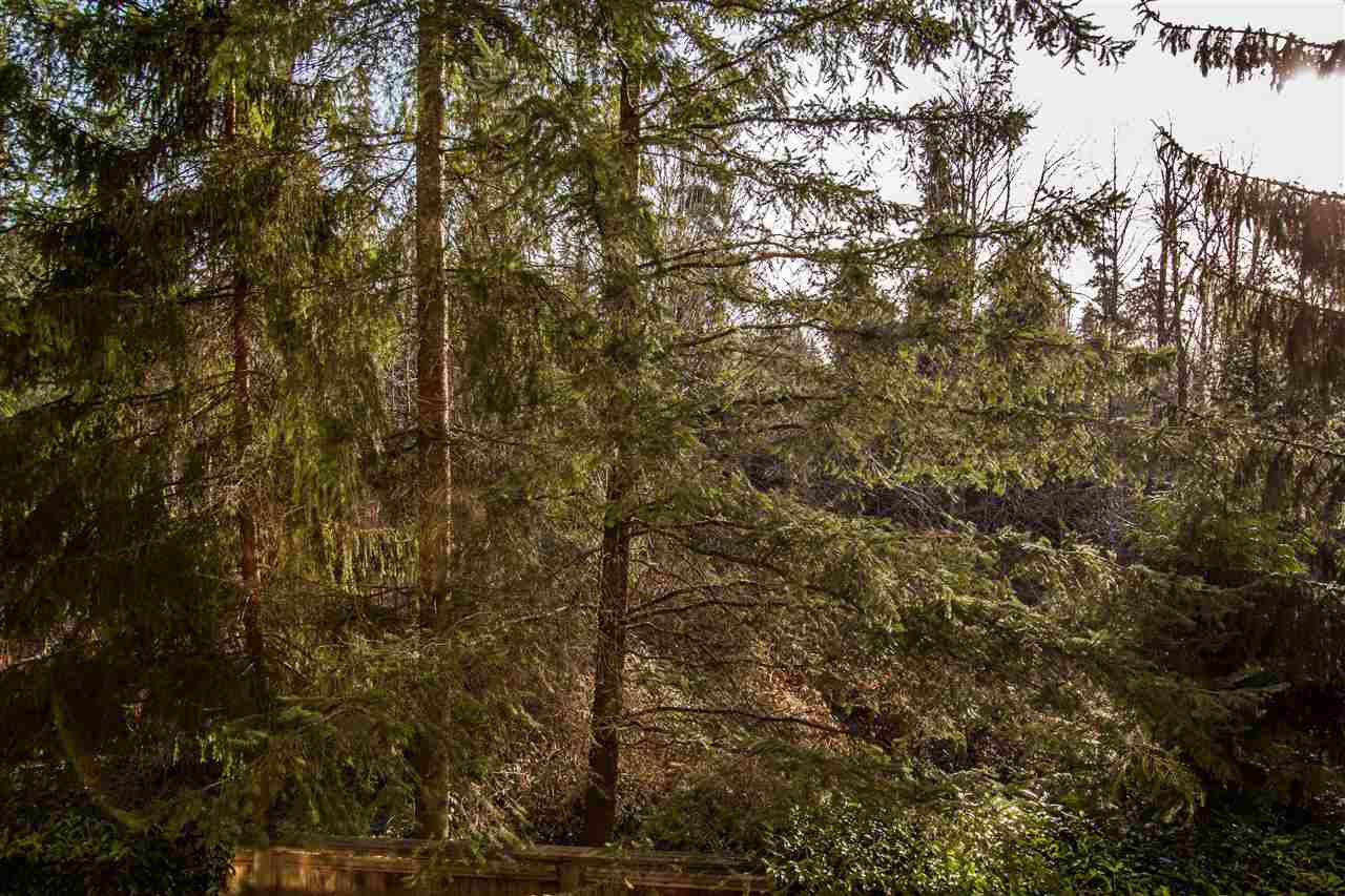 """Photo 13: Photos: 307 3625 WINDCREST Drive in North Vancouver: Roche Point Condo for sale in """"WINDSONG"""" : MLS®# R2247678"""