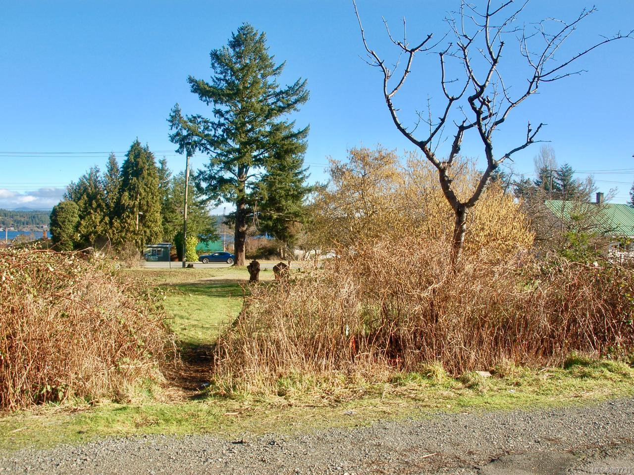 Main Photo: 730 & 770 Alder St in CAMPBELL RIVER: CR Campbell River Central Land for sale (Campbell River)  : MLS®# 807733
