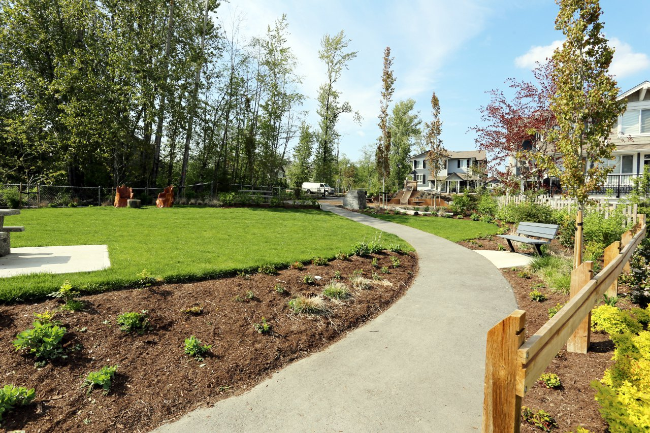 """Photo 31: Photos: 44 7059 210 Street in Langley: Willoughby Heights Townhouse for sale in """"Alder"""" : MLS®# R2263241"""