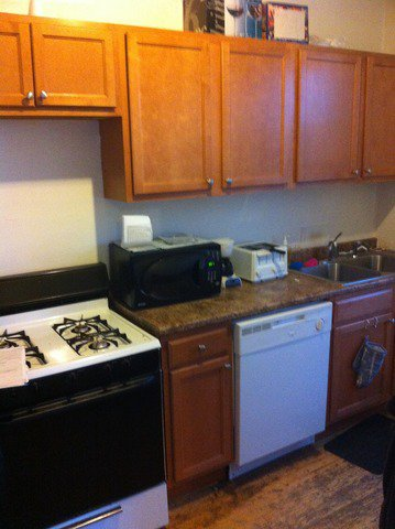 Photo 4: Photos: 3834 ROSCOE Street Unit 3 in CHICAGO: Avondale Rentals for rent ()  : MLS®# 08641776