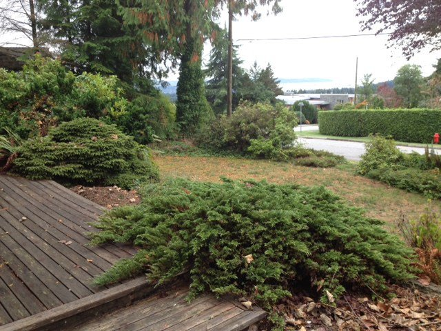 Photo 5: Photos: 4424 SKYLINE Drive in NORTH VANC: Forest Hills NV House for sale (North Vancouver)  : MLS®# R2002318