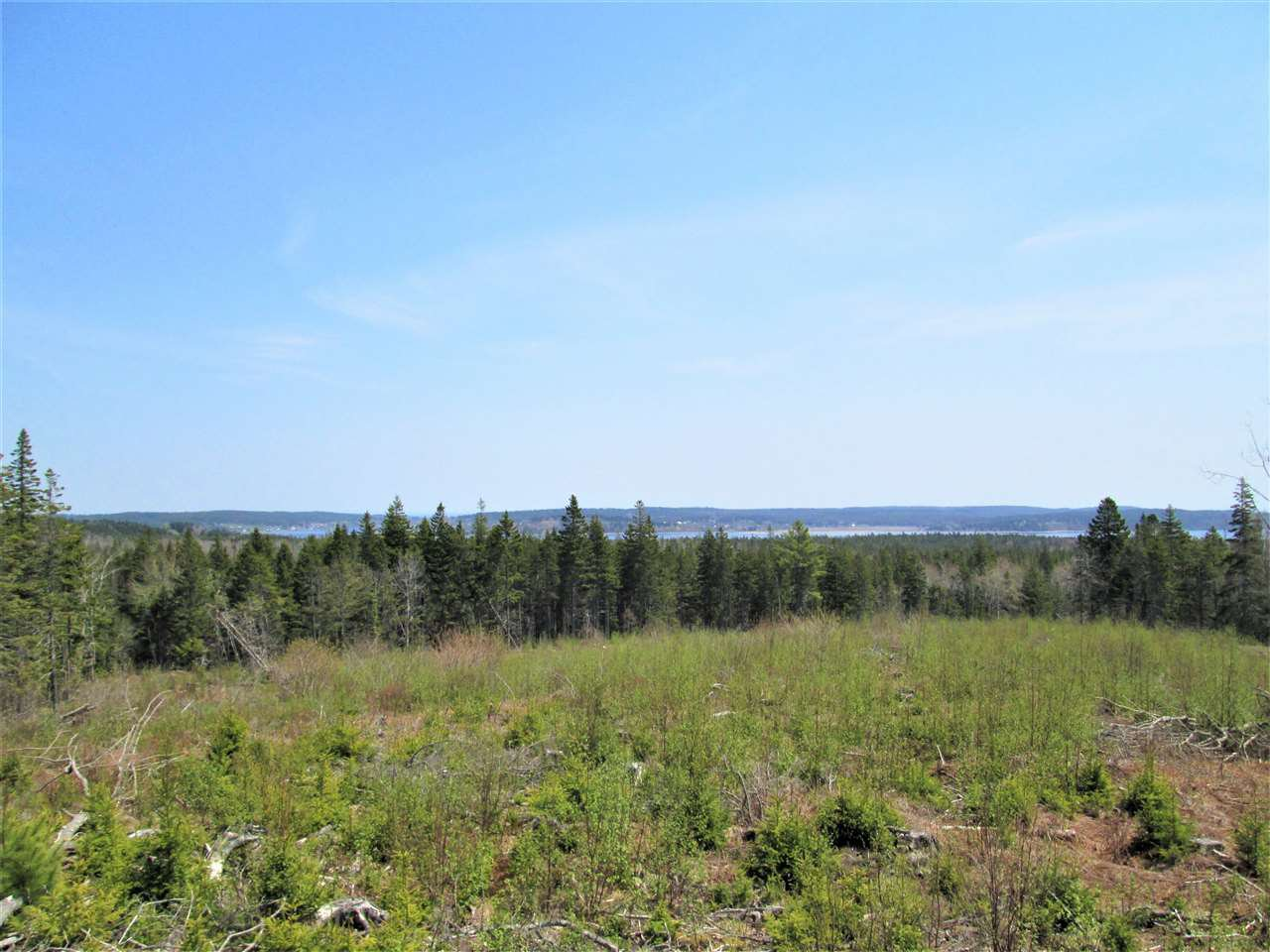 Main Photo: Map location: 3 lots Highway 331 in Dublin Shore: 405-Lunenburg County Vacant Land for sale (South Shore)  : MLS®# 201712817