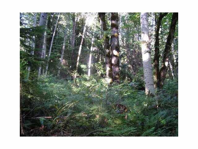 Main Photo: 6014 RIPPLE Way in Sechelt: Sechelt District Land for sale (Sunshine Coast)  : MLS®# R2194873
