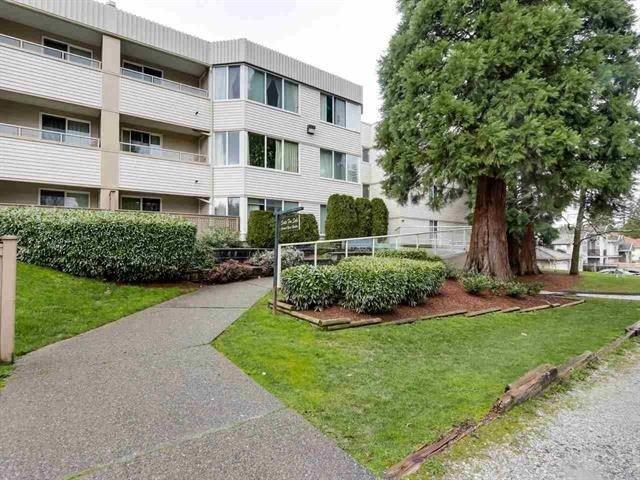 Main Photo: 212 9635 121 Street in Surrey: Cedar Hills Condo for sale (North Surrey)  : MLS®# R2235066