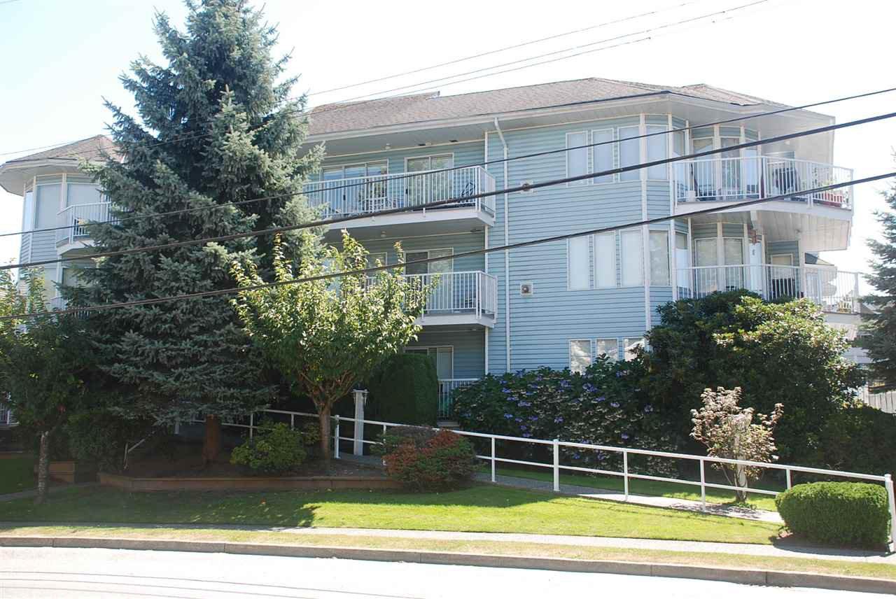 "Main Photo: 205 2050 COQUITLAM Avenue in Port Coquitlam: Glenwood PQ Condo for sale in ""WEDGEWOOD"" : MLS®# R2101053"