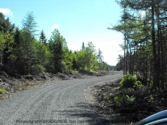 Photo 4: Photos: LOT 4 COOKS BROOK DIVERSION HWY 332 in Bayport: 405-Lunenburg County Vacant Land for sale (South Shore)  : MLS®# 5028510