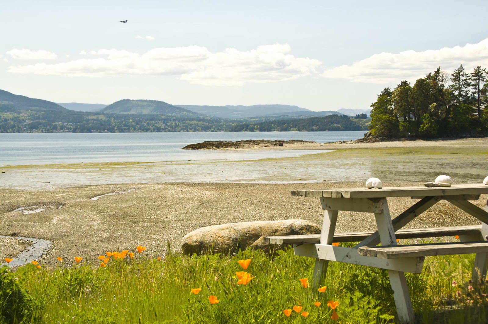 Main Photo: 645 Towner Park Rd in North Saanich: NS Deep Cove House for sale : MLS®# 370902