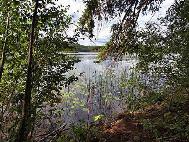 Main Photo: 4068 EAGLE CREEK Road in Canim Lake: Canim/Mahood Lake Land for sale (100 Mile House (Zone 10))  : MLS®# N247476