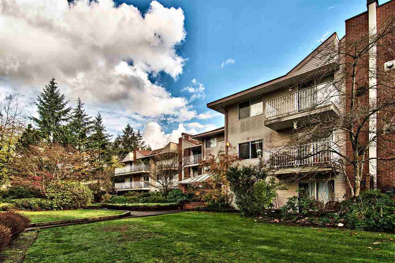 Main Photo: 306 1187 PIPELINE Road in Coquitlam: New Horizons Condo for sale : MLS®# R2123453