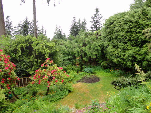Photo 20: Photos: 473 MONTERAY Avenue in North Vancouver: Upper Delbrook House for sale : MLS®# V1115755