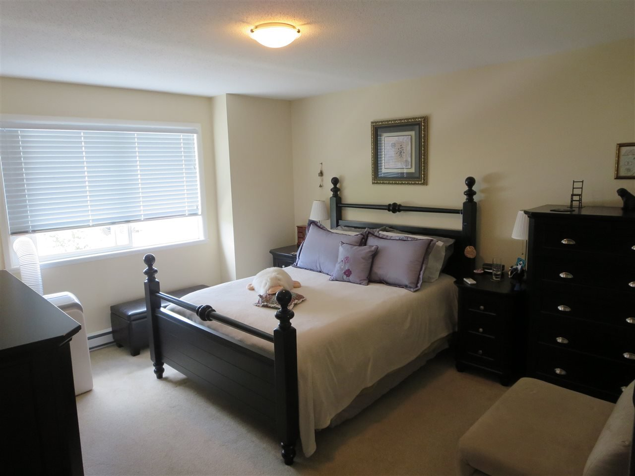 Photo 8: Photos: 63 3127 SKEENA Street in Port Coquitlam: Riverwood Townhouse for sale : MLS®# R2090693