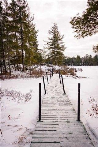 Photo 18: Photos: 8771 Bolger Lake in Whitestone: House (Bungalow) for sale : MLS®# X4005454