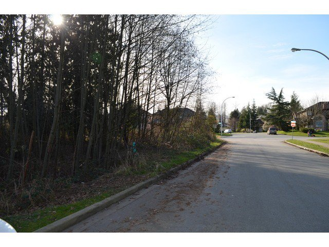 Main Photo: 15926 107TH Ave in North Surrey: Fraser Heights Home for sale ()  : MLS®# F1434612