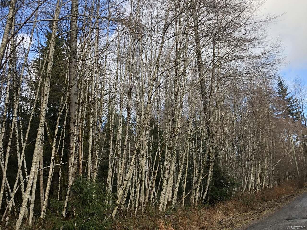 Main Photo: LT 13 PRENDERGAST ROAD in COURTENAY: CV Courtenay West Land for sale (Comox Valley)  : MLS®# 779740