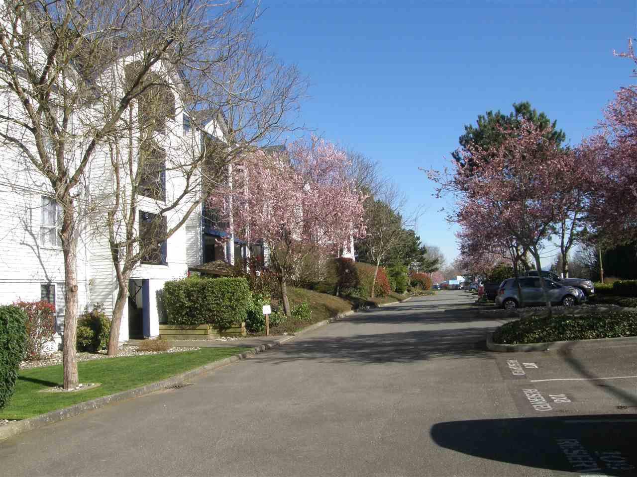 "Photo 3: Photos: 112 4955 RIVER Road in Delta: Neilsen Grove Condo for sale in ""SHOREWALK"" (Ladner)  : MLS®# R2047368"