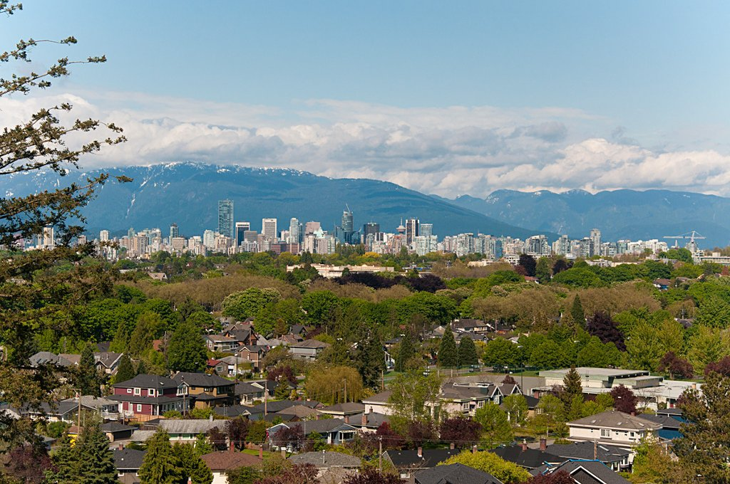 Photo 27: Photos: 3529 BLENHEIM Street in Vancouver: Dunbar House for sale (Vancouver West)  : MLS®# V891326
