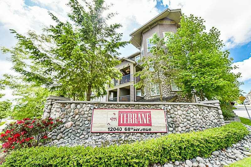 "Main Photo: 156 12040 68 Avenue in Surrey: West Newton Townhouse for sale in ""TERRANE"" : MLS®# R2176505"