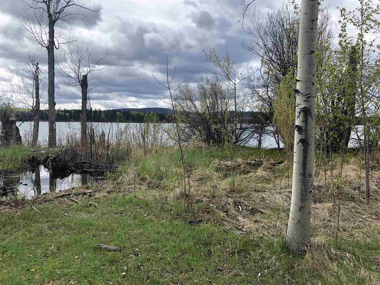 "Photo 3: Photos: LOT 1 BRANCH Drive in Williams Lake: Williams Lake - Rural East Land for sale in ""ROSE LAKE"" (Williams Lake (Zone 27))  : MLS®# R2374052"