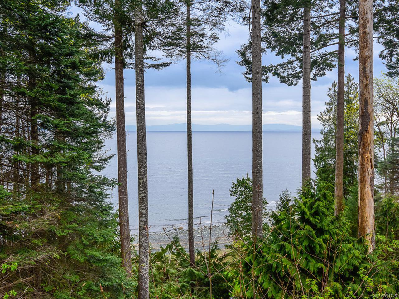 Main Photo: 4651 Maple Guard Dr in BOWSER: PQ Bowser/Deep Bay Single Family Detached for sale (Parksville/Qualicum)  : MLS®# 811715