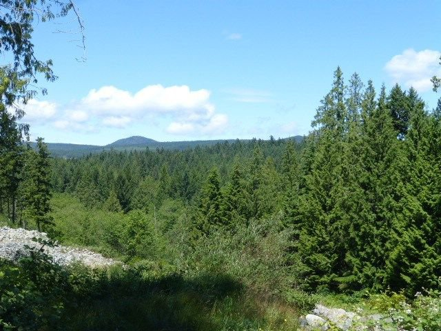Main Photo: Lot 7 JORGENSEN Place in Halfmoon Bay: Halfmn Bay Secret Cv Redroofs Land for sale (Sunshine Coast)  : MLS®# R2250319