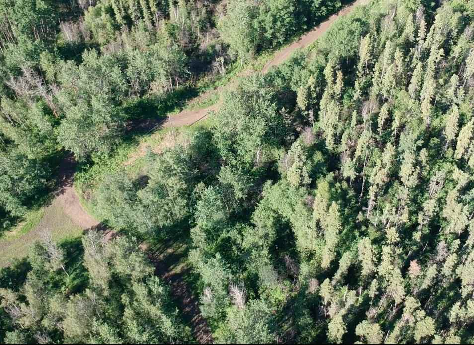Main Photo: 53143 Range Road 214: Rural Strathcona County Rural Land/Vacant Lot for sale : MLS®# E4202482