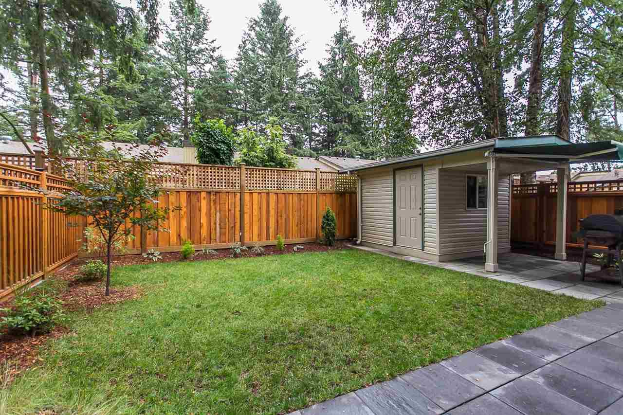 """Photo 18: Photos: 34 32310 MOUAT Drive in Abbotsford: Abbotsford West Townhouse for sale in """"Mouat Gardens"""" : MLS®# R2097604"""