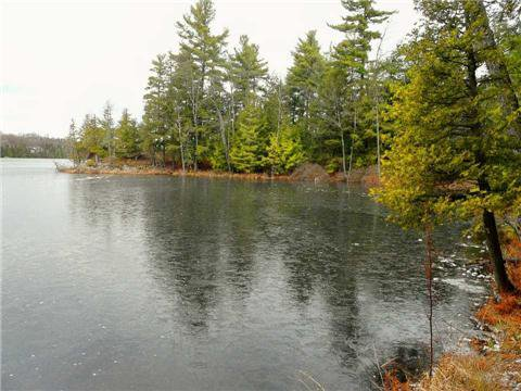 Main Photo: 0 St Georges Lake Road in Central Frontenac: Property for sale : MLS®# X3224210