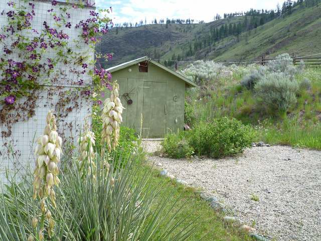 Photo 6: Photos: 4120 DEVICK ROAD in : Rayleigh House for sale (Kamloops)  : MLS®# 130112