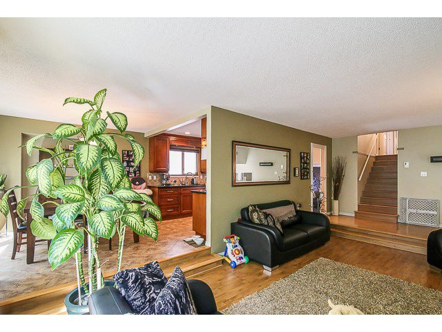 Photo 5: Photos: 14495 91B Avenue in Surrey: Bear Creek Green Timbers House for sale : MLS®# F1445618
