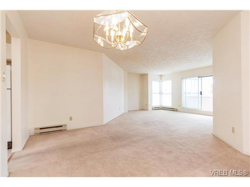 Photo 9: Photos: 335 40 W Gorge Rd in VICTORIA: SW Gorge Condo for sale (Saanich West)  : MLS®# 721229